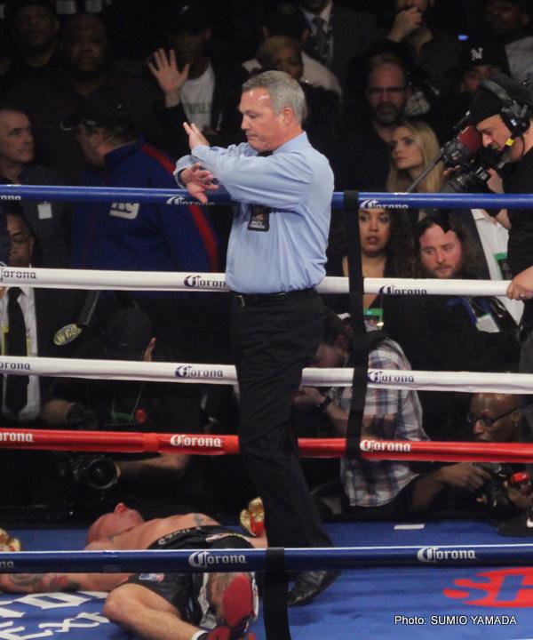 1-wilderszpilka (2) » Boxing News 24