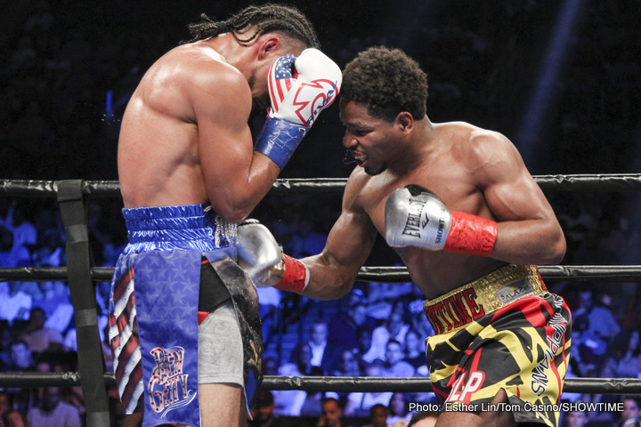 Image result for Porter vs Berto