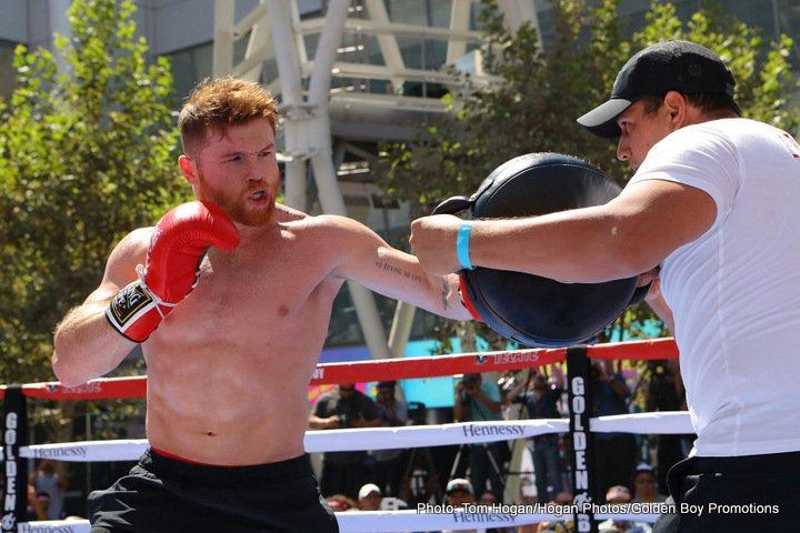 de la hoya mcgregor would last 1 round with canelo boxing news