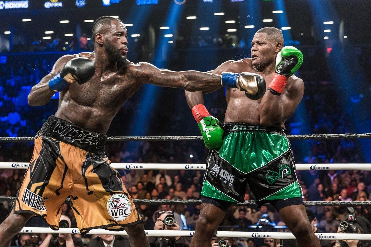 boxing news 4