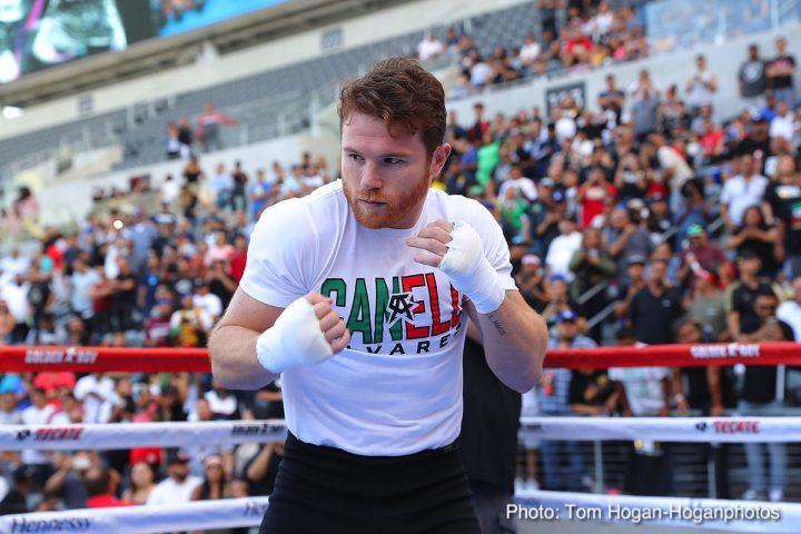 Canelo Alvarez Gennady Golovkin Shane Mosley