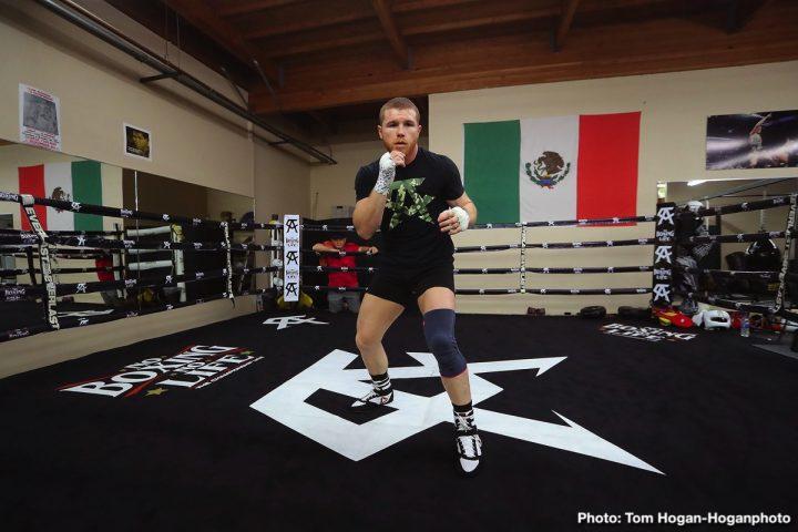 Saul Alvarez Canelo vs. Fielding Rocky Fielding