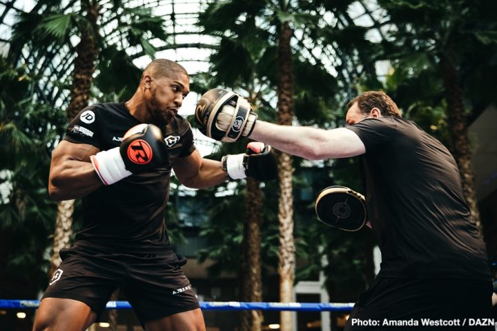 Anthony Joshua Deontay Wilder Tyson Fury Andy Ruiz Jr DAZN Joshua vs. Ruiz Jr
