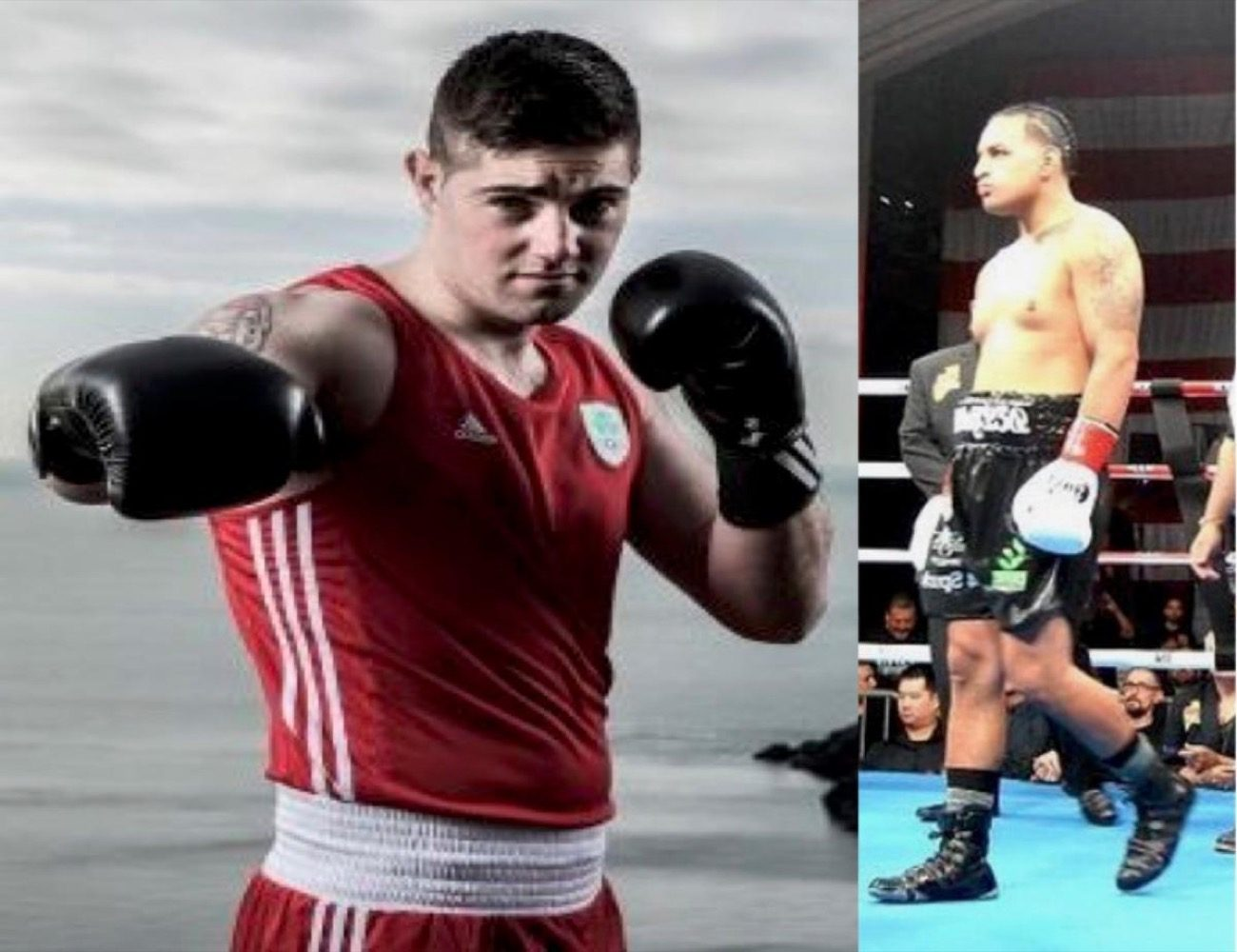 - Latest Golovkin vs. Derevyanchenko Joe Ward