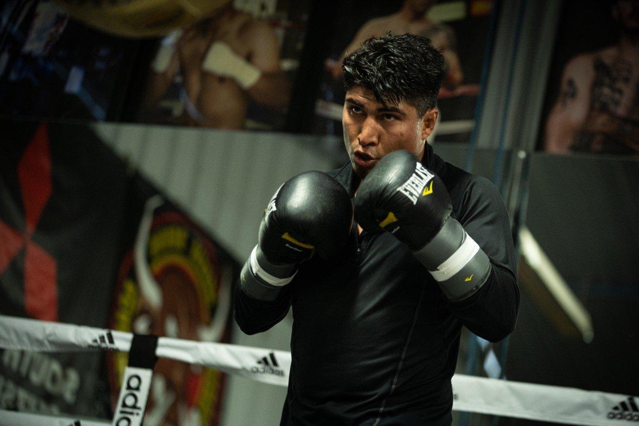 Errol Spence Jr Jessie Vargas Mikey Garcia