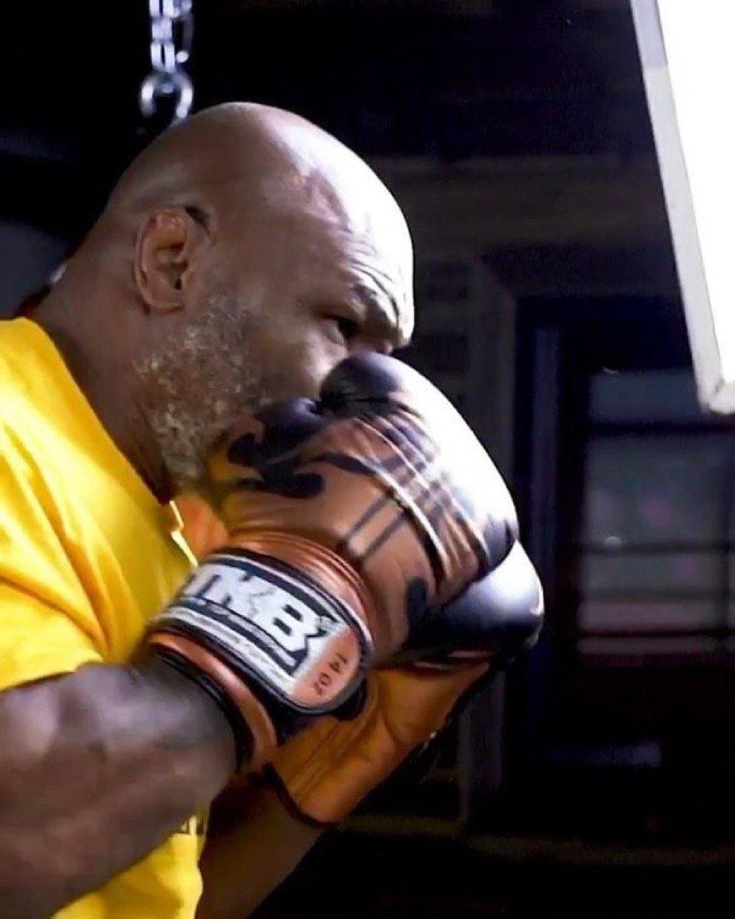 Floyd Mayweather Jr Mike Tyson Roy Jones Jr.