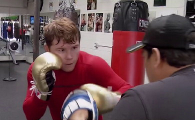 saul alvarez miguel cotto floyd mayweather jr boxing  photo